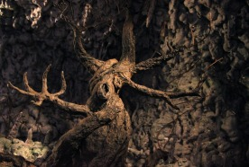 "The evil tree inside of the cave from my film ""Metempsychosis"". The tree is made out of crumpled and painted aluminum foil with a wire armature to make it animateable. The cave walls and stalactites are made out of foam."